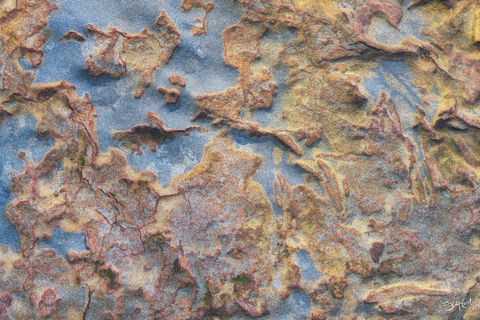 google earth, botanical beach, british columbia, closeup, colorful, sandstone