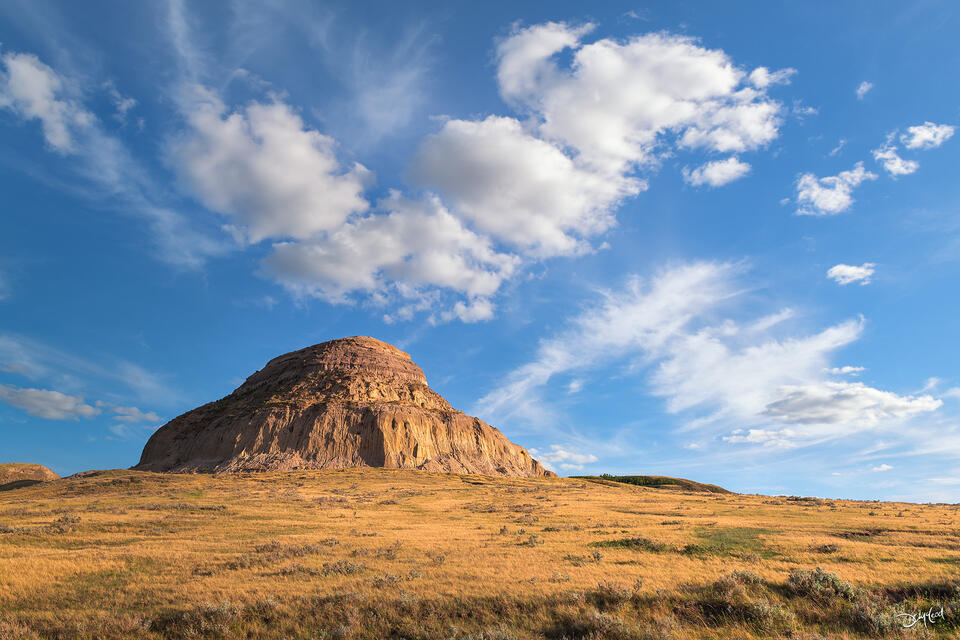 A 230 foot tall sandstone butte in southern Saskatchewan is lit by the setting sun amongst yellow prairie grasses and blue sky filled with puffy white clouds.