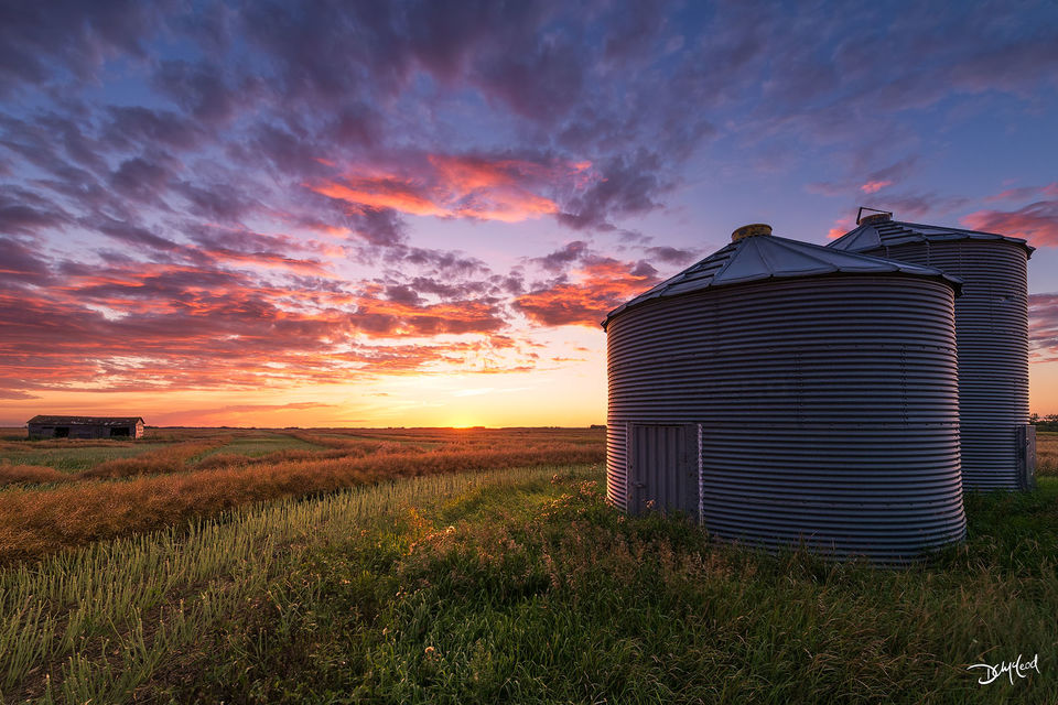 Two grain bins stand in a field during a colorful sunset at harvest time in Saskatchewan, Canada.