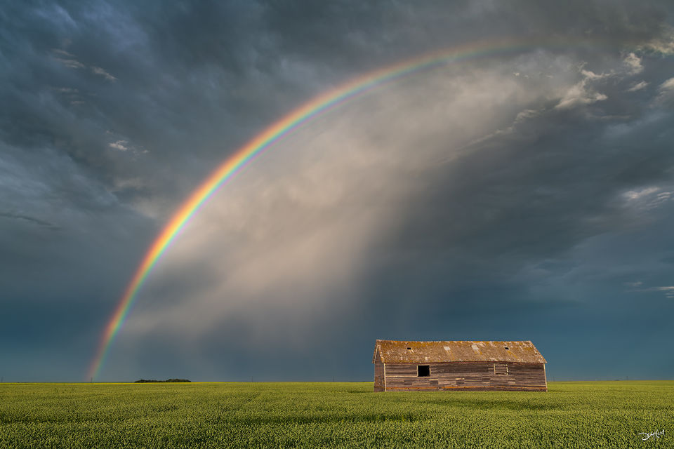 Rainbow over an old barn in a field after a rainstorm in Saskatchewan, Canada.