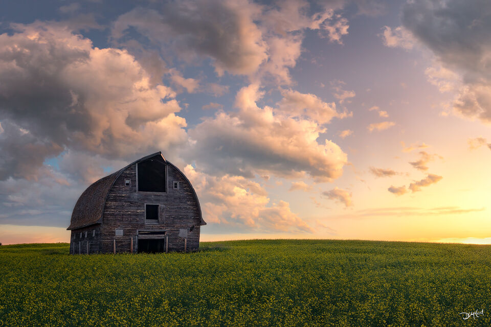 Old barn standing in a prairie field during colorful yellow sunrise in Saskatchewan, Canada.