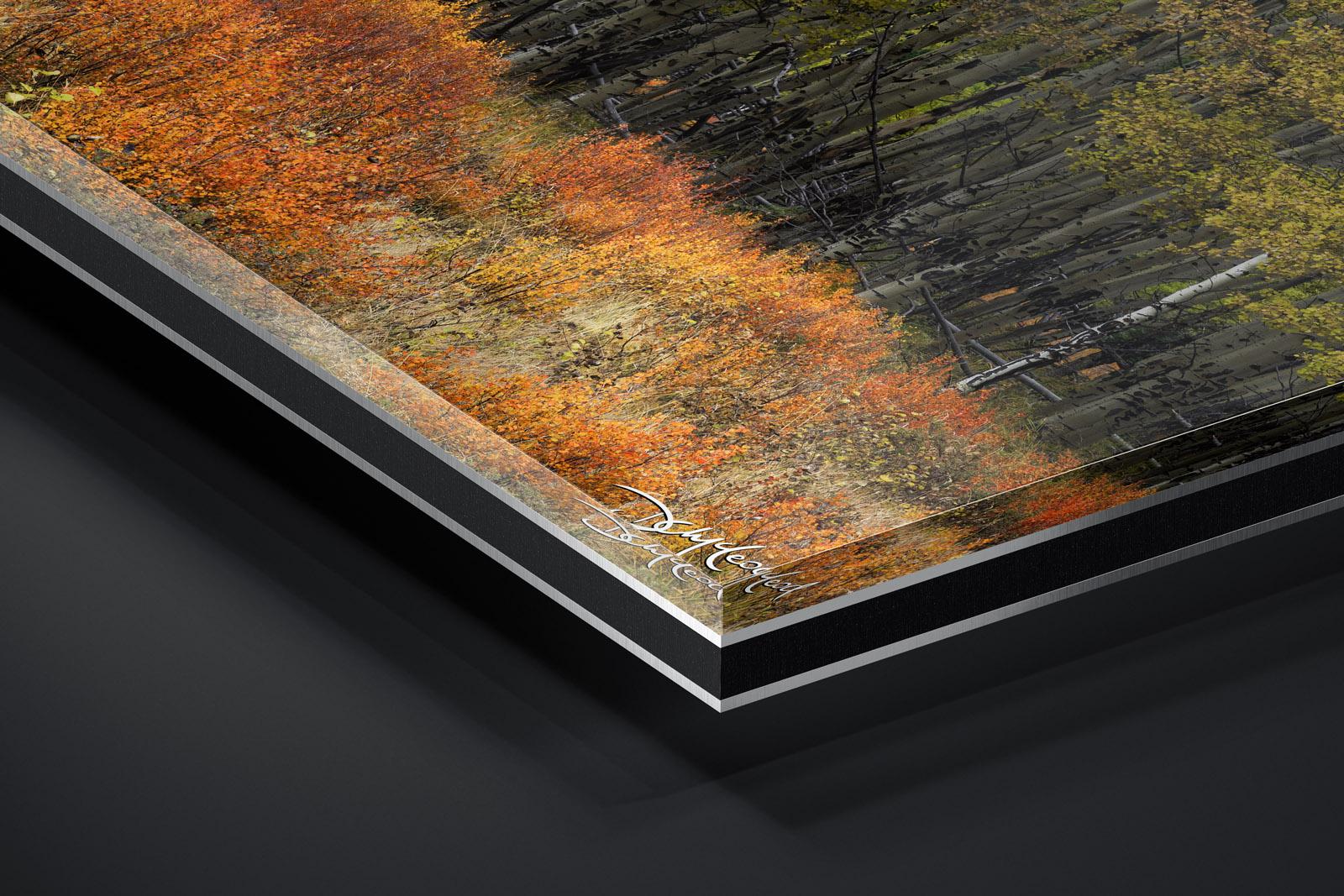 Lumachrome® Trulife® Acrylic Print print preview