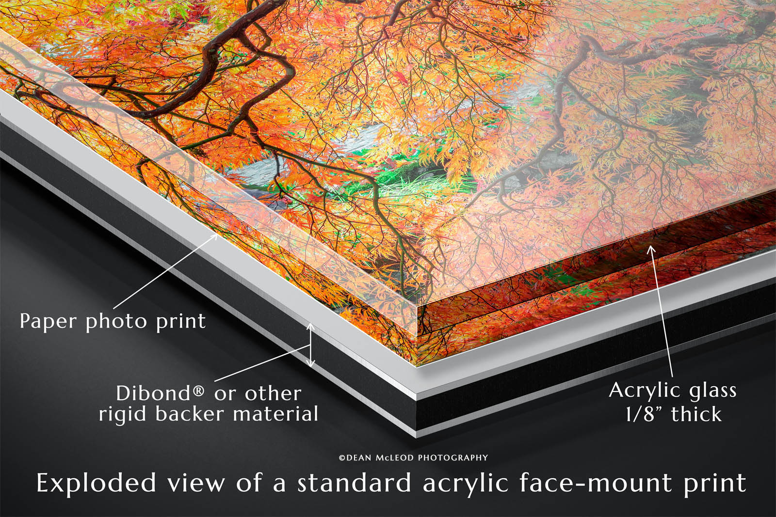 Diagram illustrating the layers of a typical acrylic face-mount photographic print.