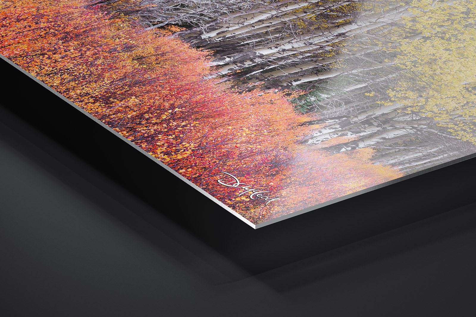 Fujiflex® Crystal Archive Metal Print print preview