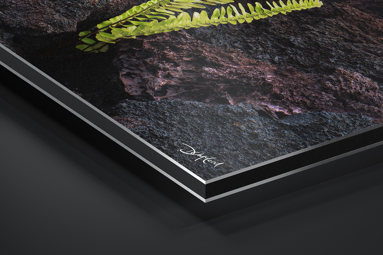 Metallic Dibond® Print print preview