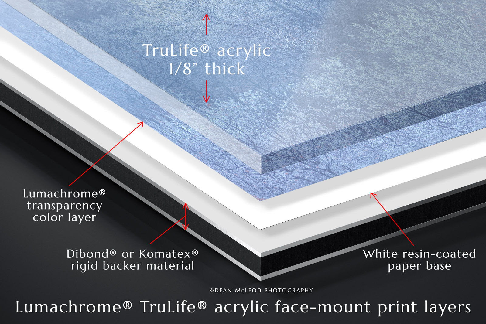 Diagram illustrating the layers of a Lumachrome TruLife acrylic face-mount photographic print.