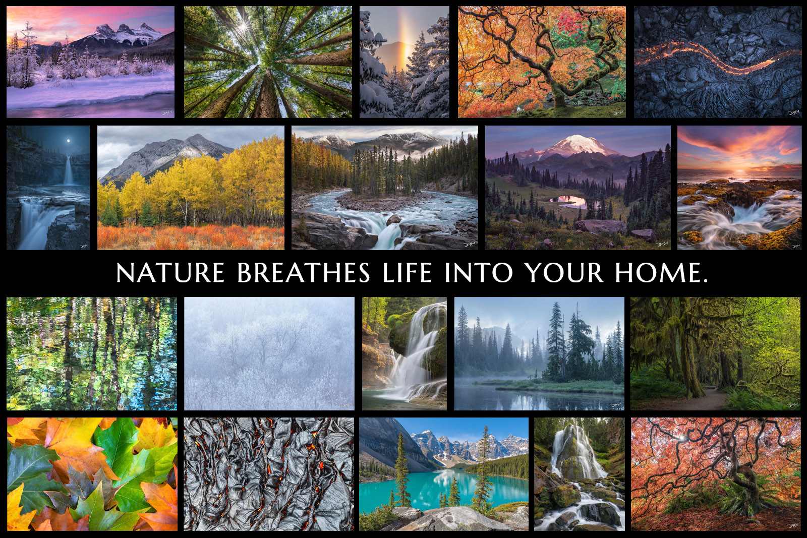 Collage of a selection of nature images sold as fine art prints by photographer Dean McLeod.