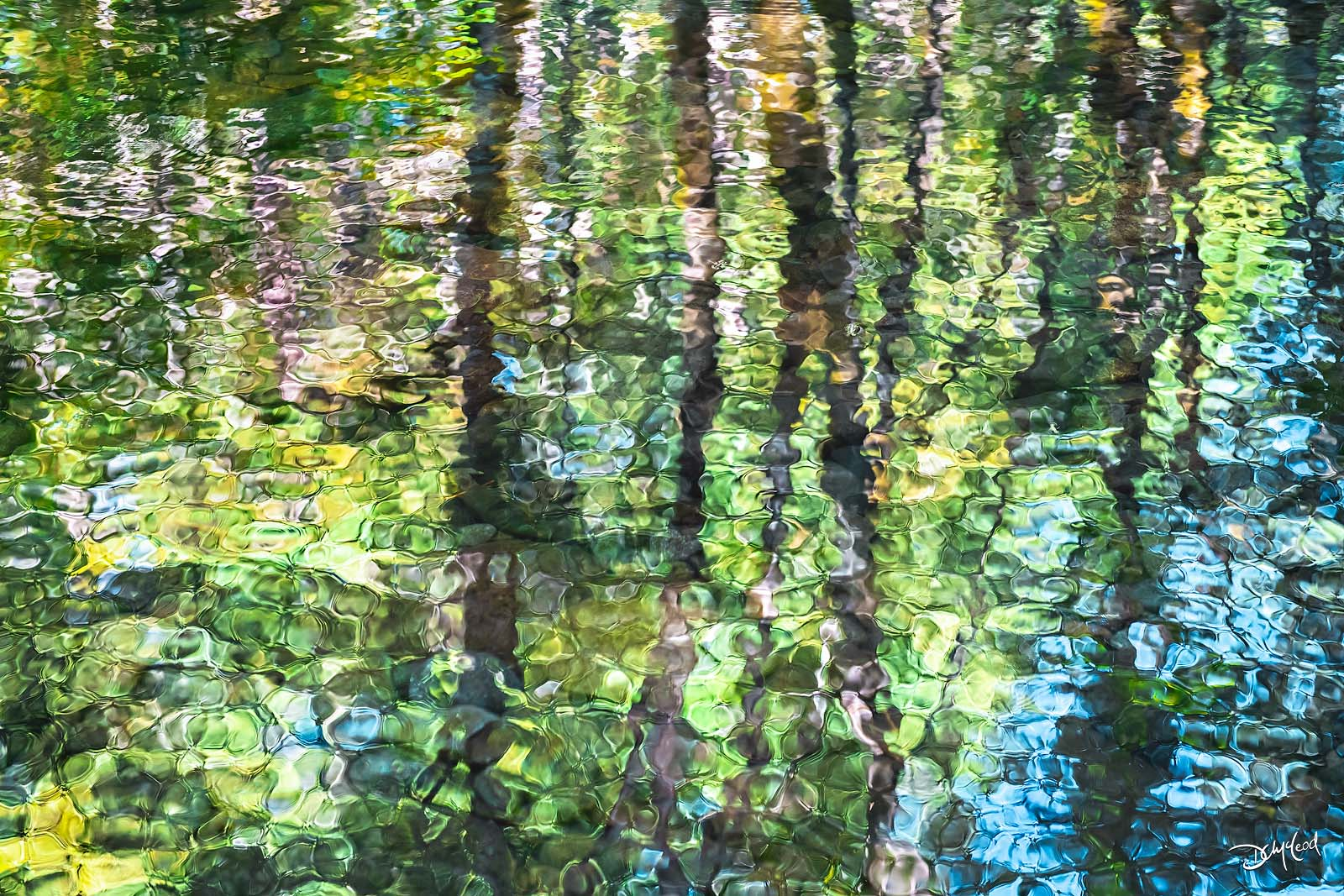 The green and blue reflection of trees and sky in the waters of Falls Creek, Washington.