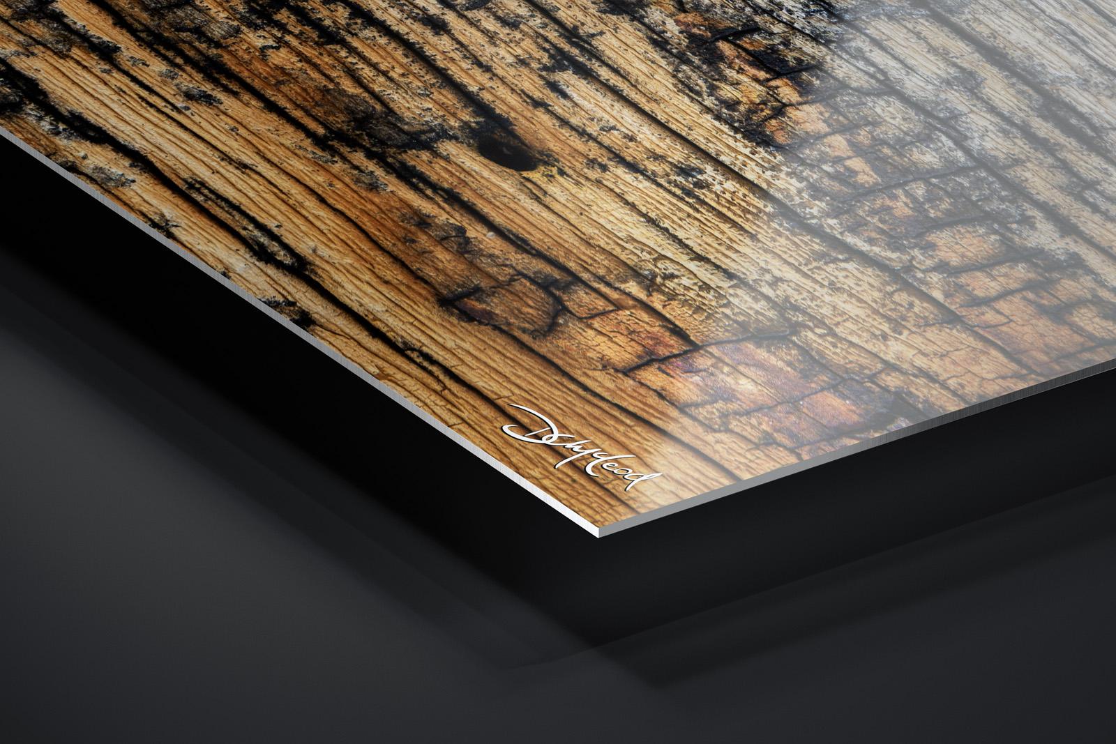 Fujiflex® Crystal Archive Metal Print print preview